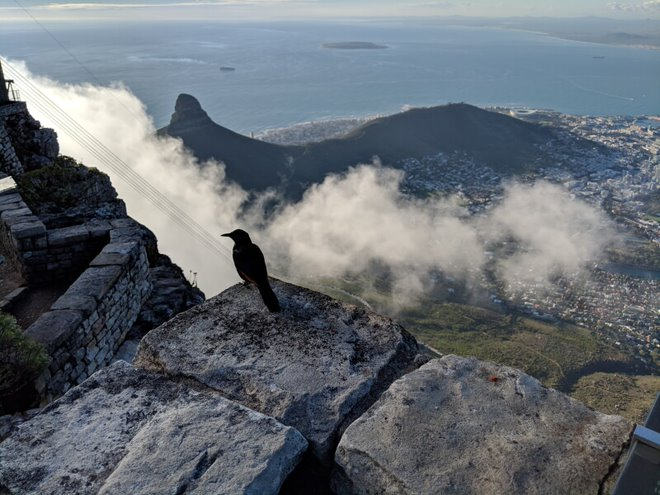 The view from atop Table Mountain takes your breath away